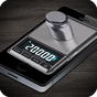 Digital Scale 玩笑  APK