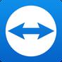 TeamViewer for Remote Control v13.0.7985
