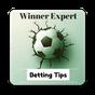 Winner Expert Betting Tips 1.13