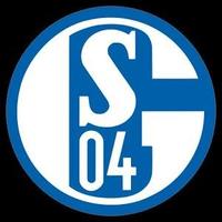 3D Schalke 04 Live Wallpaper