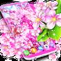 Sakura flowers live wallpaper 7.7