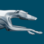 Greyhound Lines 3.0.903
