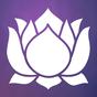 Meditation Experience 2.5.2