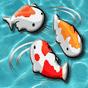 Feed the Koi fish Kids Game