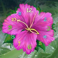 Flower Clock Live Wallpaper APK Simgesi