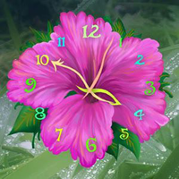 Ícone do Flower Clock Live Wallpaper