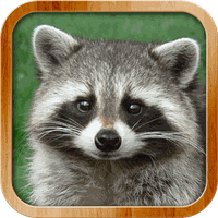 Ikona Kids learn about animals, FULL