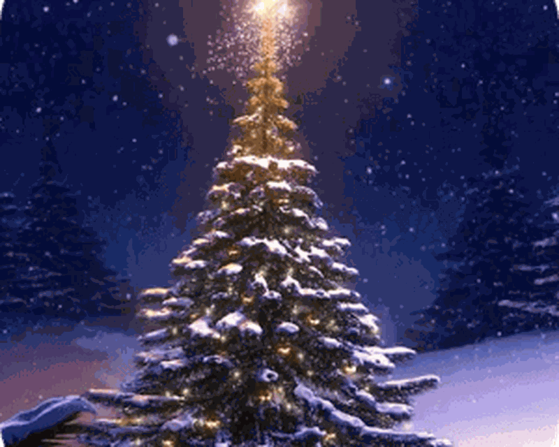 Christmas Tree 3d Wallpaper Android Free Download Christmas