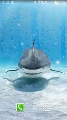 Screenshots Of Shark Live Wallpaper