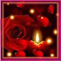Rose Candle Live Wallpaper  APK