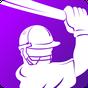 Live cricket scores cricitch 11.1.0