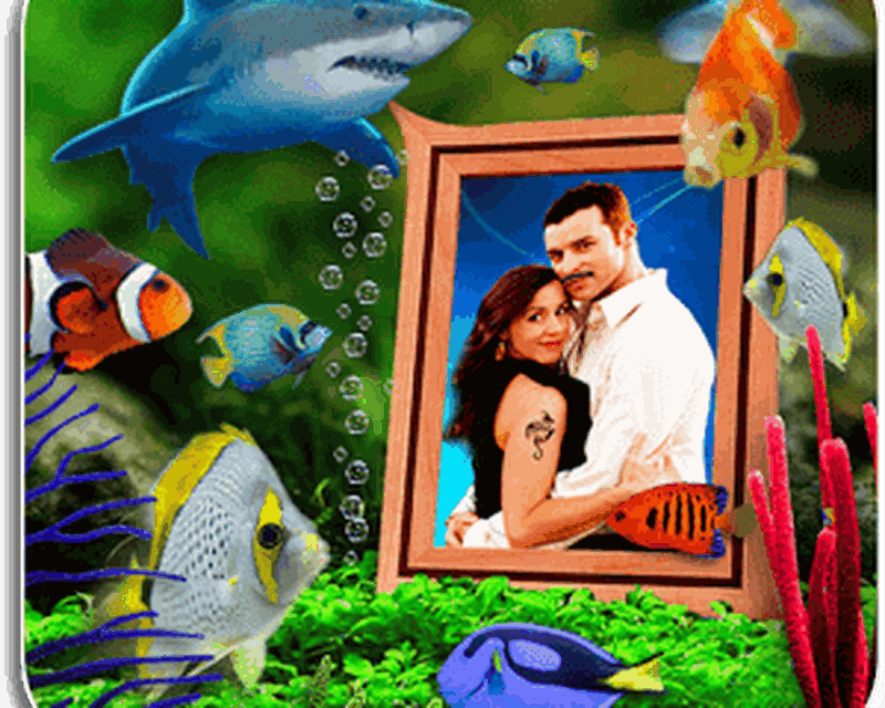 Photo Aquarium Live Wallpaper Android Télécharger Photo Aquarium