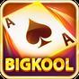 BigKool - Danh bai, Game bai 1.6