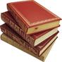 Библиотека Digital Books 2.0