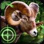 Wild Hunter 3D 1.0.8