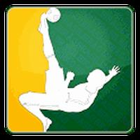 Ícone do apk Brasileirão