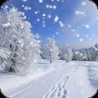 Icoană apk Iarna zapada live Wallpaper