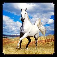 Ícone do Cavalo Papel de Parede Vivo