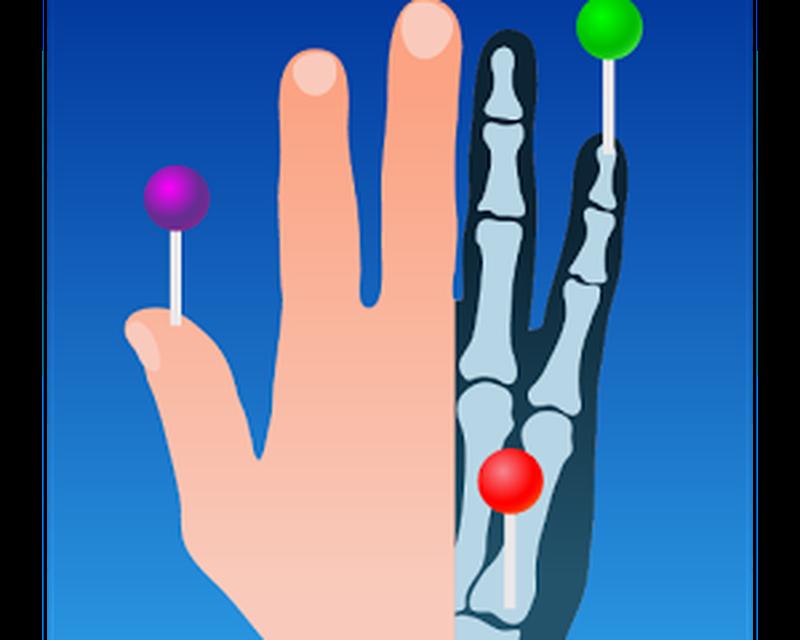 e-Anatomy Android - Free Download e-Anatomy App - IMAIOS SAS