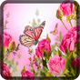 Butterfly Wallpapers for Chat  APK