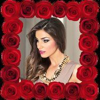 Ícone do Rosa Molduras Para Fotos