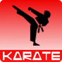 Karate training 1.00