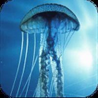 3D Jellyfish HD Live Wallpaper apk icono