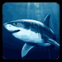 Shark Live Wallpaper 60