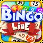Bingo Live 1.1