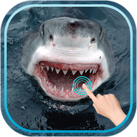 Magic Touch Shark Attack APK icon