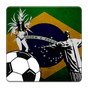 Copa mundial de futbol 2014  APK