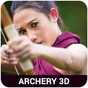 Olympic Archery 1.23