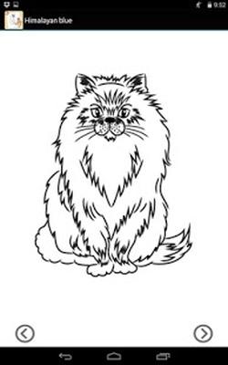 Să Elaboreze Pisici și Câini Android Download
