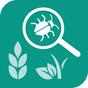 Zararli ot, hastalıklar, böcek 1.0.11