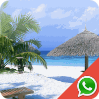 Icono de Beach Wallpapers for Chat