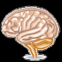 ไอคอน APK ของ เกมส์สมอง, เกมส์ใจ