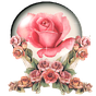 flowers images Gif animated  APK