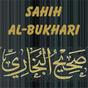 Sahih Al Bukhari (Deutsch) 1.17 APK