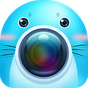 Seals camera:Beauty yourself 1.0.2 APK