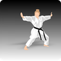 Apprendre Kung Fu 1.25