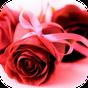 Imagens com Mensagens de Amor 7.5