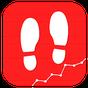 Pedometer For Walking 12.1.2