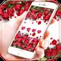 빨간 장미 라이브 벽지 발렌타인 데이 빨간 장미 테마 1.1.6