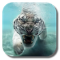 do tigre Planos de fundo 2.8.0