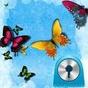 GO Locker Theme Kelebek Mavi 4.7
