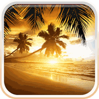 Beach Sunset Live Wallpaper Android Free Download Beach Sunset