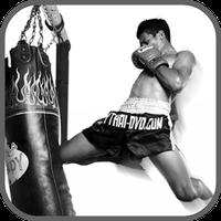 Muay Thai Training & Technique apk icon