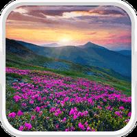 Εικονίδιο του βουνό λουλούδι Φοντο Κινητου