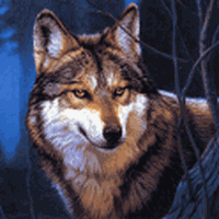 Ícone do Wolf Jigsaw Puzzles