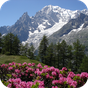 Relájese Montaña 4.3.1